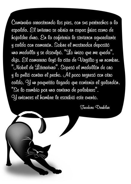 gato_biblioluces