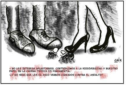 cain_asfalto_biblioluces